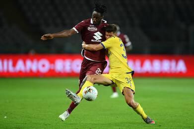 Torino-Verona 1-1: video, gol e highlights della partita di Serie A