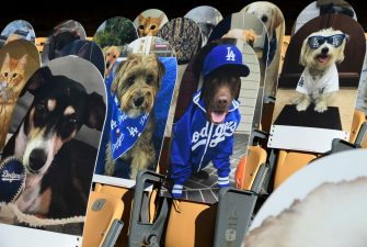 LOS ANGELES, CA - AUGUST 10: Cardboard cutouts of pets are placed in seats where fans usually sit during the San Diego Padres and Los Angeles Dodgers baseball game at Dodger Stadium on August 10, 2020 in Los Angeles, California. Dodger fans for $149, can now purchase a Los Angeles Dodgers Fan Cutout for their dog and cat. Net proceeds from the sale of cutouts will benefit the Los Angeles Dodgers Foundation, the Dodgers' official charitable organization.  (Photo by Kevork Djansezian/Getty Images)