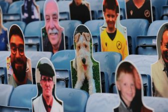 LONDON, ENGLAND - JUNE 30: A cardboard cut-out of a dog is seen in the stands prior to the Sky Bet Championship match between Millwall and Swansea City at The Den on June 30, 2020 in London, England. (Photo by Alex Burstow/Getty Images)