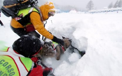 Ravascletto, valanga su una pista da sci: nessun ferito