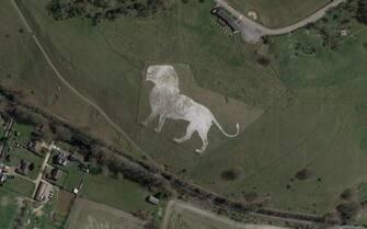 Un leone disegnato nella terra, visto da Google Earth