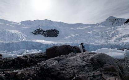 Uncover Antarctica, Oppo Find X2 Pro messo alla prova