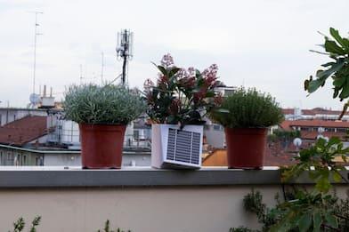 Arianna, il portavaso che misura la qualità dell'aria