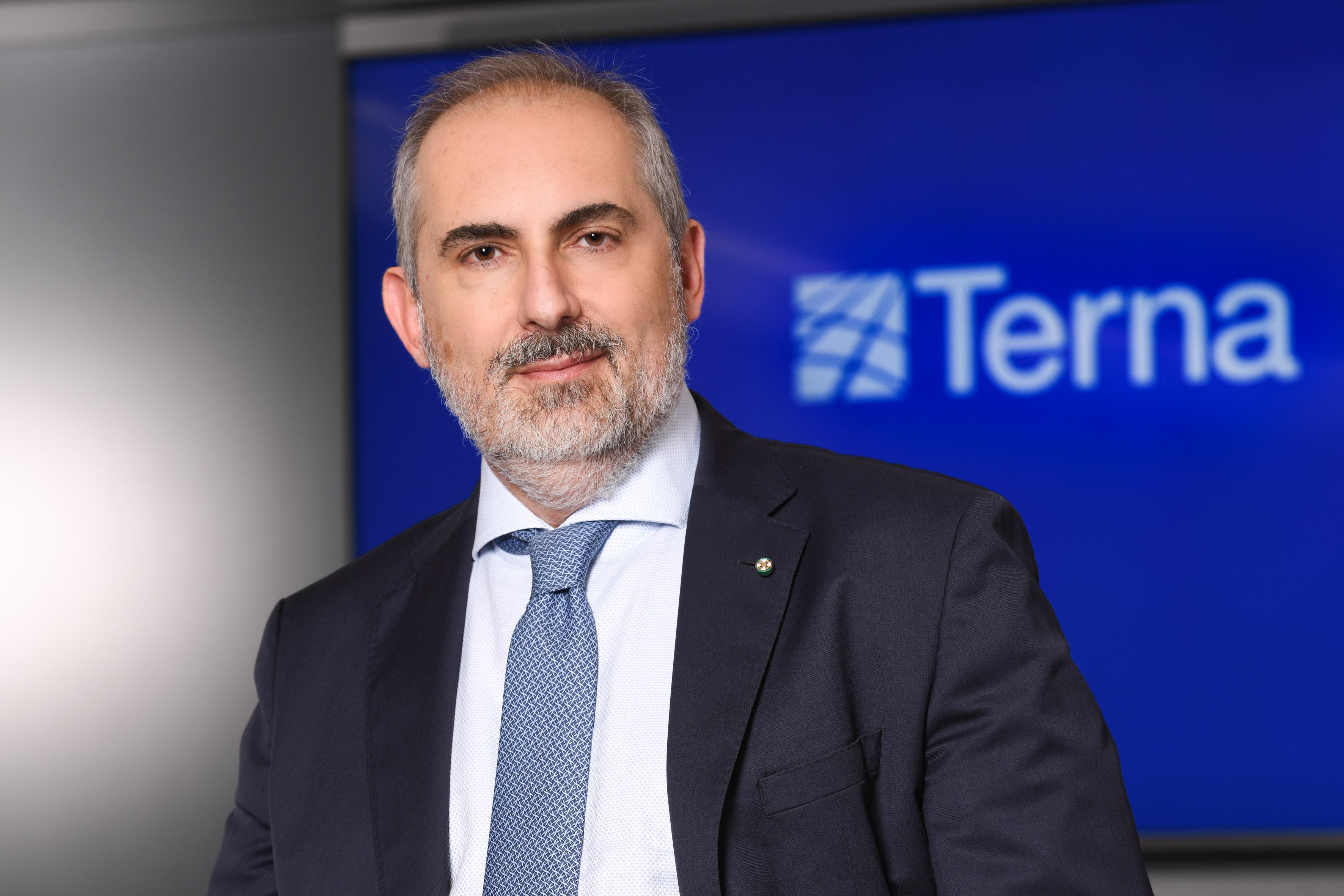 L'amministratore delegato di Terna, Stefano Donnarumma