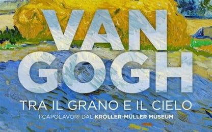 Van Gogh. Tra il grano e il cielo: la RECENSIONE