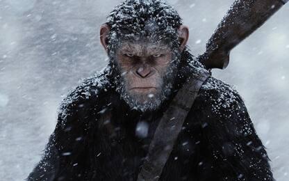 The War – Il pianeta delle scimmie, la guerra è su Sky Cinema