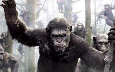 cesare-pianeta-delle-scimmie