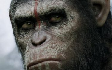 pianeta-scimmie