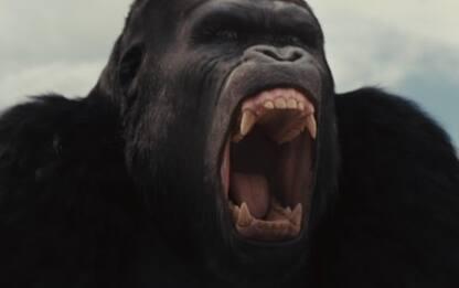 Bestiario scimmiesco: la struttura sociale del Pianeta delle Scimmie