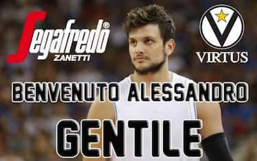 gentile_virtus