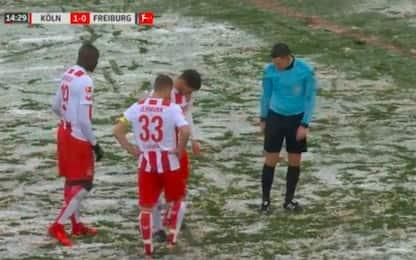 Troppa neve, l'arbitro non trova il dischetto!