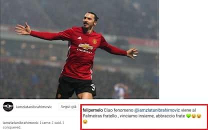 "Ibrahimovic svincolato. Melo: ""Vieni al Palmeiras"""