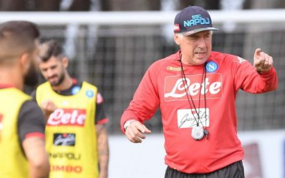 Napoli, Ancelotti acquista puledra purosangue