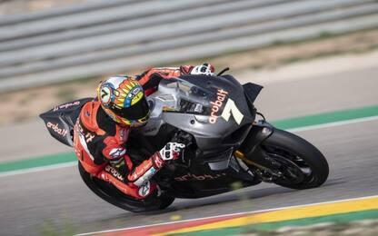 Il V4 Ducati vincente in SBK come Honda e Aprilia?