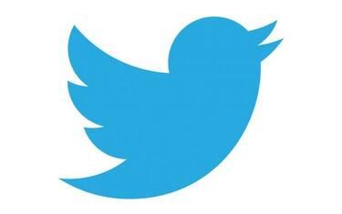 Twitter-icon-horizontal-e1478850385702