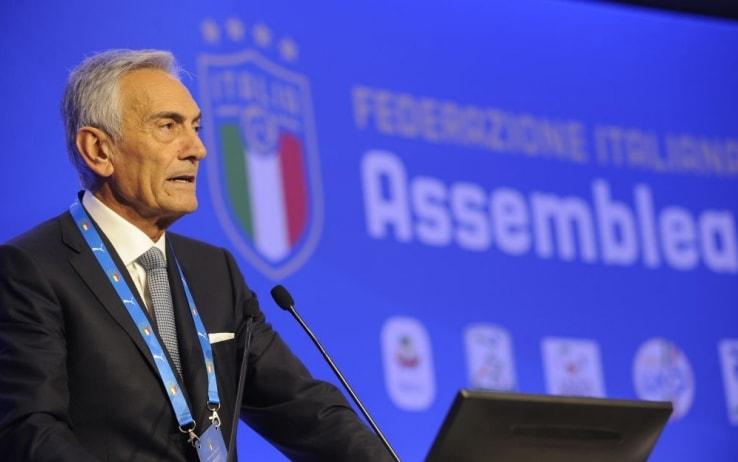 Chi è Gabriele Gravina, il nuovo presidente della FIGC   Sky Sport