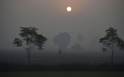 L'inquinamento in India provoca 1,2 milioni di morti l'anno