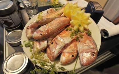 Dai pesci al piatto: la plastica e i rischi per l'uomo