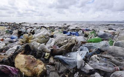 """L'allarme dell'Ispra: """"La situazione dei rifiuti in mare è grave"""""""