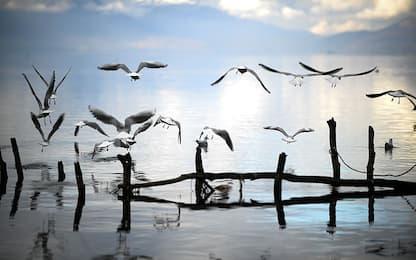 Il piano che minaccia il lago Ocrida