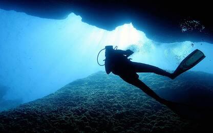 Canyon sottomarini, scrigni di biodiversità a rischio