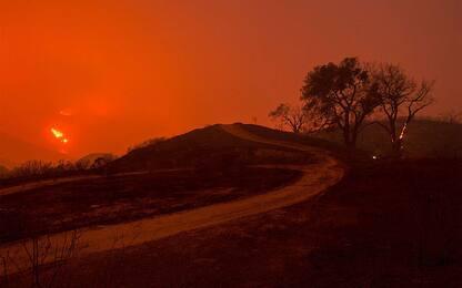 Vento e siccità, il cambiamento climatico aumenta il rischio incendi
