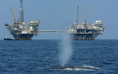 """Trovato nel Pacifico un grande """"serbatoio"""" di metano"""