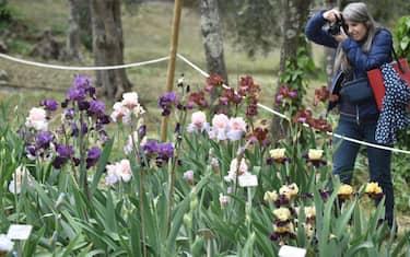 01-giardino-iris-firenze-ansa