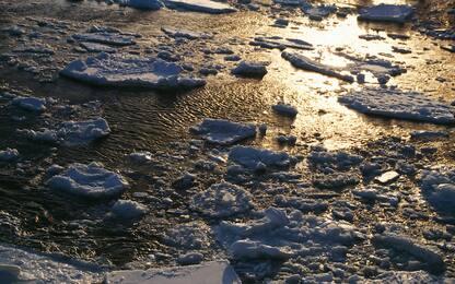 Antartide, ghiacciai alti 3 metri in meno rispetto al 2008