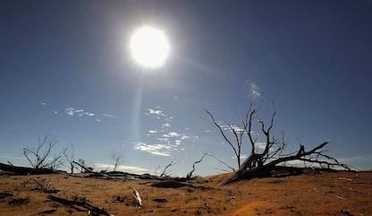 Riscaldamento globale, rischi anche per possibili effetti sui batteri