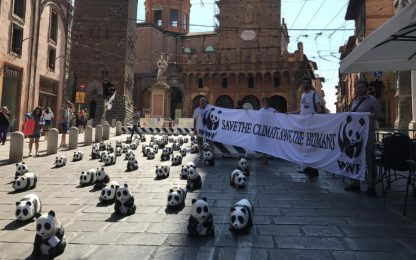 G7 Ambiente, Wwf porta panda a Galletti
