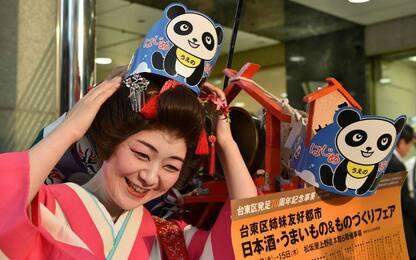 Giappone, festa per cucciolo panda