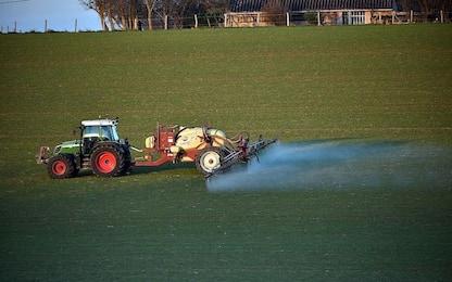 Troppi pesticidi nelle acque italiane, rilevate 259 sostanze