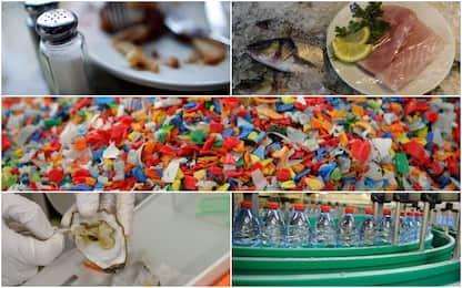 Dal sale ai molluschi: come la plastica contamina i nostri alimenti
