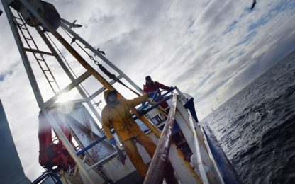 Tecniche di pesca, quali sono quelle più sostenibili. LA SCHEDA