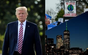 collage_clima_trump