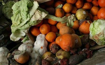 Spreco alimentare, ogni anno in Ue 88 milioni di tonnellate di rifiuti