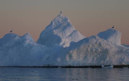 Le Sentinelle spaziali monitorano la 'fuga' dell'iceberg gigante