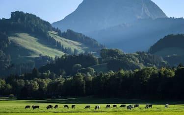 GettyImages-Svizzera