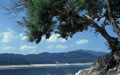 Patrimonio Unesco, l'Italia candida la Sila e le Alpi del Mediterraneo