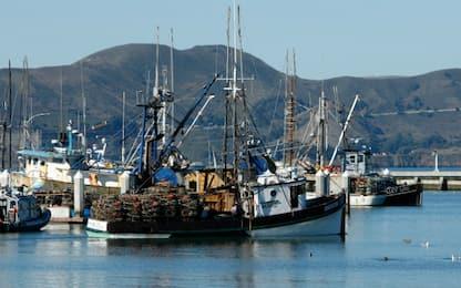 Clean Sea Life, il progetto che aiuta i pescatori a smaltire i rifiuti