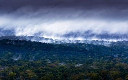 Emissioni di CO2, l'Africa tropicale è un'insospettabile protagonista