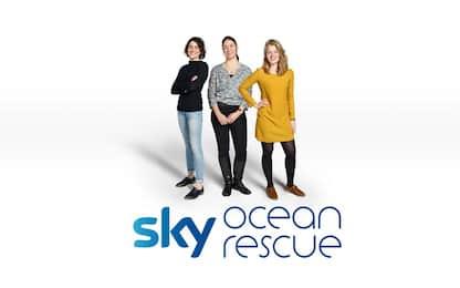 Sky Ocean Rescue, borse di studio contro la plastica: i tre vincitori