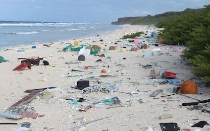 Plastic Radar, l'iniziativa Greenpeace per segnalare plastica in mare