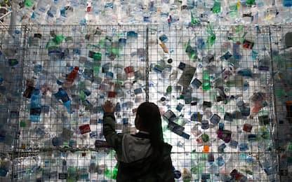 Ricerca Wwf: ogni settimana ingeriamo cinque grammi di plastica
