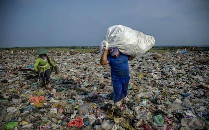 """Wwf: """"Con bando monouso, -40% di plastica dispersa in natura"""""""