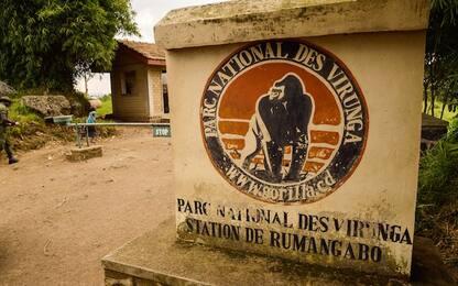 Congo, governo valuta l'estrazione petrolifera nei parchi naturali