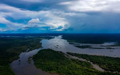 Natura, trascurarla costerà cibo e acqua per 5 miliardi di persone