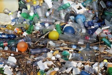 Manovra, plastic tax dimezzata e dietrofront sulle auto aziendali