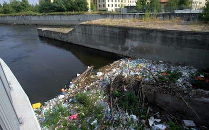 """Milano, """"isola"""" di rifiuti di plastica sul Naviglio Pavese"""